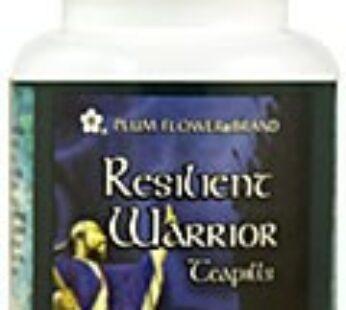 Resilient Warrior Teapills-Ren Shen Bai Du Wan
