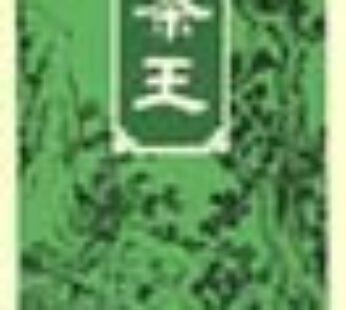Ten Ren Tea – King's 313 (150g)