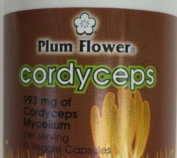 Cordyceps by Plum Flower